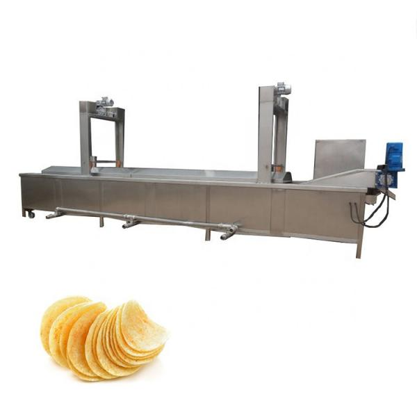 Industrial Automatic Continuous Fryer Gluay Kag Frying Machine with Ce Certificate