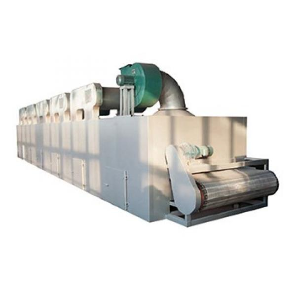 Mesh Belt Multilayer Continuous Electric Conveyor Oven Dryer Machinery/Gas Diesel/Steam Oven Dryer Equipment